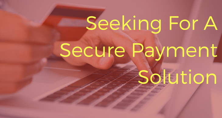 Seeking For A Secure Payment Solution [Infographic]
